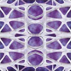 舒顏萃-3D聚左旋乳酸 4